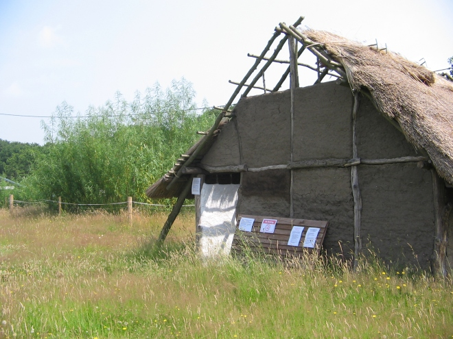 The Romano British House under construction